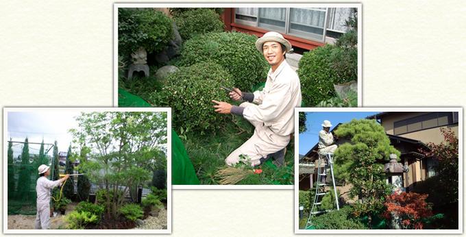 造園にしやまの庭木のお手入れの様子